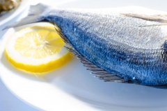 Φρέσκο ψάρι / Fresh Fish